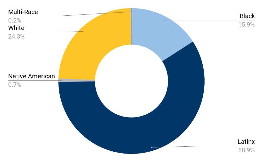 circular chart outlining the student body demographics of Alma del Mar