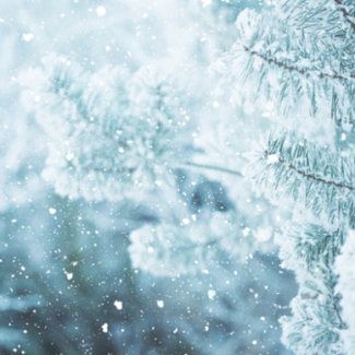 decorative snow image